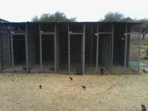 5 Section Panel Bird cage