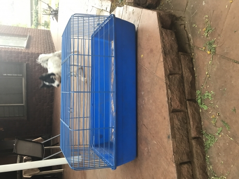 Small rabbit or guinea pig cage