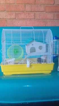 Hamster Cages For Sale, R450, Contact Lee 0734776357, Goedeburg Benoni area