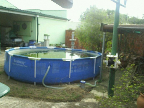 Pool in good condition