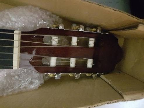 Proel guitar