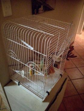 parrot/cocketiel cage