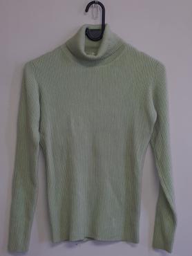 Light Green Polo Neck