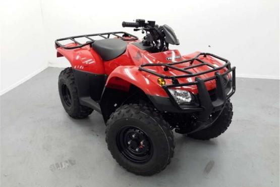 Honda TRX 250 TM