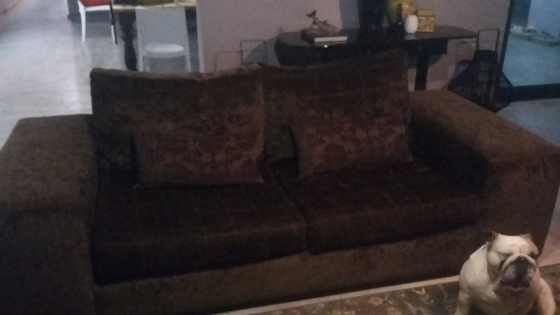 quality weatherlys large brown velvet couches.