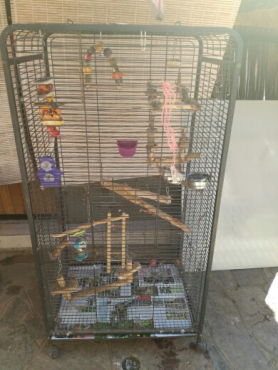 Parrot cage 78cm by 140cm