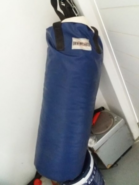 Invincible Punching bag