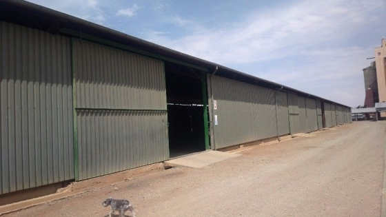 Huge X-NWK Steel Structure Shed for Sale