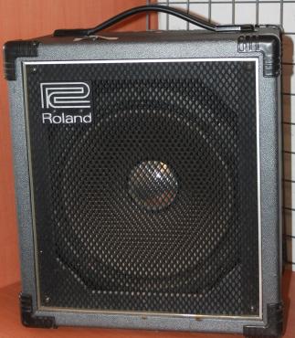 Roland guitar speake
